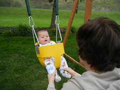 new swing in the backyard