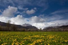Dientes de Leon. (JokinRom) Tags: landscape leon picosdeeuropa 60d tokina1116mmf28
