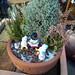 ほのぼのとする雪だるまの読書会を表現した鉢植えの写真