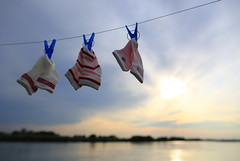 Baby Socks 3 (♥ Spice (^_^)) Tags: pink blue sunset red sky white color water japan clouds canon river geotagged photography eos photo spring clothing asia flickr image bokeh may picture clip laundry 夕陽 string 日本 5d 雲 空 青 litrato 2012 水 春 写真 白 川 赤 靴下 babysocks ibarakiken 茨城県 kogashi 古河市 キャノン ピンク ボケ カラー markⅲ canoneos5dmarkⅲ 赤ちゃん用 medyasngsanggol socksforbabygirl stripesocksforbaby