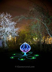 Flower Power (Gus Mercerat ( 130.000 Thanks!)) Tags: light art luz night america canon germany painting munich real bayern deutschland bavaria photography europa fotografie time mark live ngc performance galaxy ii lp nocturna alemania 5d latino graff fotografia gus inti germania sud lichtmalerei iphone baviera nocturnes lapp mercerat