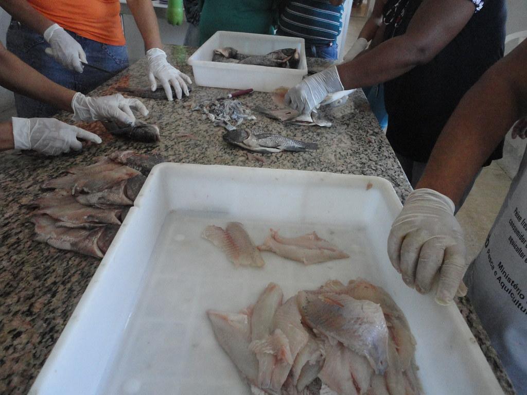 Atividades das Pescadoras. (2)