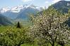 Rauris, im Pinzgau (Waidblicker) Tags: alps nature landscape austria nationalpark hohe rauris pinzgau hohetauern tauern wörth bucheben