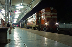 Mr. Baldie at Pipariya (Ujjawal) Tags: station lumix diesel locomotive alco madhyapradesh irfca katni wdg3a pipariya fz35
