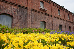 Maizuru Red Brick Warehouse Park (6) (double-h) Tags: warehouses maizuru  maizururedbrickwarehouse