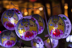 Lotus Lanterns (Travis-Allen) Tags: lights asia korea parade seoul lamps southkorea buddhasbirthday lotuslanternfestival