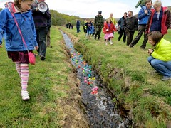 The duck race (Feis Alligin) Tags: 2012