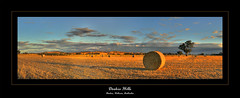Dookie Hills (Andrew Fleming Photography) Tags: sunset australia andrew victoria hills dookie hay fleming mountmajor andrewfleming goulburnvalley centralvictoria greatershepparton