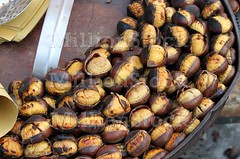 Grilled chestnuts (alessandro0770) Tags: travel november autumn italy food brown travelling fall tourism cooking up closeup fruit italian hands october europe italia open seasons basket close view sweet sale rustic seasonal nuts cook tourists roast grill september seeds gourmet eat pile chestnuts snack produce organic cooked typical grilling grilled marron heap autumnal roasting prepare glace roasted nutrition calories castors piled
