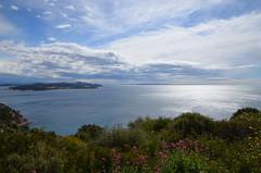 Mediterranean panorama (dfromonteil) Tags: flowers light sea sun mer clouds fleurs soleil spring mediterranean lumire wide nuage printemps mditerrane