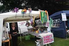 IMG_3306 (ravensknowlegala) Tags: park west yorkshire childrens gala ravens huddersfield 2015 knowle ravensknowle