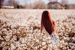 Finally at home (antonio_borzillo) Tags: flowers portrait spring mood dream