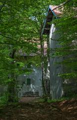 Sensazioni_sconosciute (Danilo Mazzanti) Tags: verde photography foto photos liguria case fotografia atmosfera fotografo danilo bosco cascina mazzanti faiallo danilomazzanti wwwdanilomazzantiit