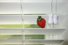Strawberry Blinds Forever (ricko) Tags: strawberry song blinds thebeatles 2016 145366 pullcords