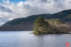 On the way to Skye 6 (Kasia Sokulska (KasiaBasic)) Tags: trees lake mountains landscape island scotland spring highlands loch lomond inveruglas fujix