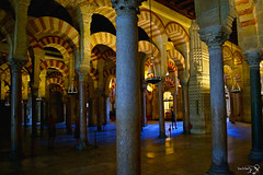 Mezquita - Cordoba (Tiziano De Donno) Tags: travel holiday spain nikon muslim islam religion arts espana cordoba mezquita