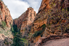 View from a Switchback (Roshine Photography) Tags: cliff rock landscape outdoor canyon mountainside zionnationalpark rockformation crag pentaxk3ii westrimtrailtoangelslanding 2016utahtrip