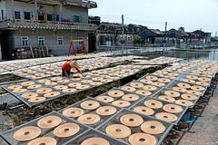 Incense coils (MelindaChan ^..^) Tags: china mel melinda joss incense coils xinhui  chanmelmel melindachan