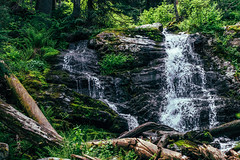 Revett Trail Waterfall (charliepnwphotography) Tags: hiking outdoor outdoors trees treeporn serene secluded pnw pacific northwest montana idaho revett lake exploring adventure adventuring explore discover beauty wanderlust nikon amateur blossom pear waterfall waterfalls amazing gorgeous calm nature