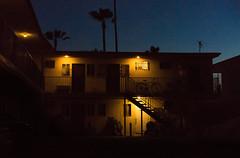 apt (AlexHayes) Tags: california travel venice summer sky chicago hot color love beach cali night clouds contrast digital plane palms lights la fly losangeles weed warm smoke sony chillin 55mm palmtree venicebeach dslr ganja mirrorless a7r