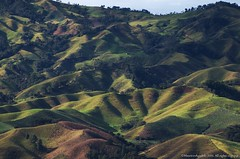 Vereda Roblalito (Explore 21 06 2016) (Ivan Mauricio Agudelo Velasquez) Tags: mountain rural forest camino carretera cultivos montaa antioquia ladera fincas potreros grangas