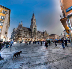 Neues Rathaus Mnchen (CROMEO) Tags: plaza people dog color germany bayern calle europe place gente platz catedral carlos dia panoramic colores perro panoramica romeo alemania munchen rathaus hdr nuevo marienplatz marien ayuntamiento neues baviera photomatix mnich despejado suaves neogotico turstico cromeo