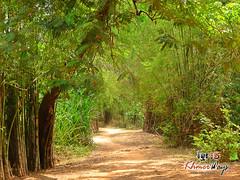 Trail - Preah Vihear.jpg