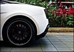 Dat Exhaust (I.H.S Photography) Tags: white black closeup hotel singapore ferrari spyder modena 5star superamerica topgear ferrarienzo challengestradale acceleration bicolore valentinobalboni lp640roadster sangbleu diablosv lamborghinireventonroadster maseratigranturismos sl65amgblackseries exhaustnote lp6704sv gallardolamborghini bugattiveyroneb164 lp5704superleggera fxxevolutione bugattiveyronvmclarenf1 sangdargent revvingcars bmwm5m3 monotonebull