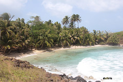 Little korn island