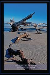 All Washed Up (Francine Schumpert) Tags: texture beach nature ga georgia landscape sand tire driftwood sandripples jekyllislandstatepark