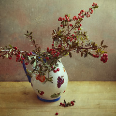 * (Xaomena) Tags: red berries pitcher