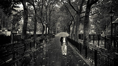 Great day for a walk in the Park (Dj Poe) Tags: park street new york city nyc bw white cinema black color wet rain umbrella bench photography dj candid voigtlander epson cinematic raining seiko poe f4 2012 rd1 skopar 21mm