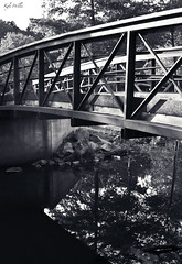 Mercer County Park (KyleWillisPhoto) Tags: park county new wood bridge white black reflection apple water marina photoshop canon kyle way photography eos rebel spring pond kiss imac walk mercer adobe jersey willis t3i x5 600d cs5