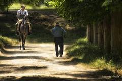 """""""Unos que vienen, otros que ....""""  Explore - 29 May -12 n170 ;-) (Roberto Fraile) Tags: salidas robertofraile roberto robado paz naturaleza horse fraile exteriores espaa composicion catalunya catalonia caballo arbol canon camino caminante campo 60d 18200mm romeriadelrocio moncadaireixac rememberthatmomentlevel1 rememberthatmomentlevel2 rememberthatmomentlevel3 rememberthatmomentlevel4 rememberthatmomentlevel5 rememberthatmomentlevel6 rememberthatmomentlevel7 rememberthatmomentlevel8 rememberthatmomentlevel9 flickrstruereflection2 flickrstruereflection1 rememberthatmomentlevel10 flickrstruereflection3 magicmomentsinyourlifelevel1 magicmomentsinyourlifelevel2 magicmomentsinyourlifelevel3"""