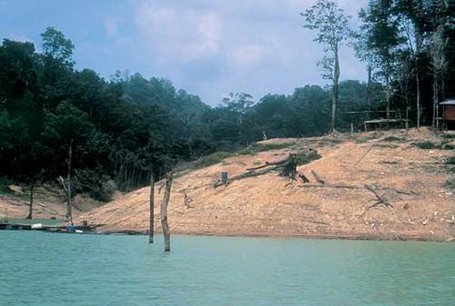 Lago di Temenggor
