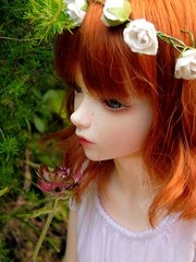 forest song ( H a z e l) Tags: flowers girl forest doll amy sweet magic fairy crown bjd msd whitedress iplehouse