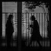 mirrored, noir (Dreamer7112) Tags: windows bw reflection tree window lines silhouette backlight reflections square schweiz switzerland blackwhite noir pattern suisse suiza squares silhouettes line patio shutters shutter mirrored backlit svizzera winterthur humaningeometry