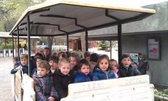 orvalle-infantil-zoo5