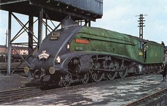 British Railways , Eastern Region . A4 Pacific 60024 . Exmouth Junction Shed , Devon . 27th-March-1966 . (AndrewHA's) Tags: london br post pacific north shed engine railway loco junction steam card exeter kingfisher british locomotive railtour a4 eastern railways exmouth lner lcgb 60024