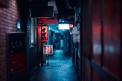 Pontocho Alleyway, Night (Jon Siegel) Tags: light japan architecture night evening alley nikon kyoto 14 85mm alleyway mysterious lantern nikkor pontocho chochin 85mmf14 nikon85mmf14
