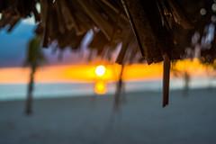Bajan Sunset (Instagram @SMSidat737) Tags: bridgetown saintmichael barbados bb sunset holiday vacation tourism caribbean orange sky sun