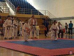 stefanou_15_5_2016_knockdown_24