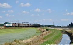 E655 047 - Merci tra sole e nuvole (MattiaDeambrogio) Tags: train san trains cargo ii domo treno novi trenitalia treni rottame caimano e655 bovo vespolate