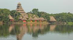 Napo wildlife centre - Amazon basin (Donna Hampshire) Tags: southamerica canon ecuador ngc amazonbasin amazonlodge napowildlifecentre anangulake donnarobinson donnahampshire