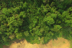 Nam_Et-Phou_Louey_National_Protected_Area_Drone_Aerial_Shot_Forested_Core_Zone_The_Nests_Tour_Tiger_Trail_Photo_By_Cyril_Eberle (Tiger Trail Laos) Tags: tourism fauna trekking nationalpark wildlife tiger conservation jungle species birdwatching rare forests biodiversity ecotourism saltlick nightsafari wcs wildlifeconservationsociety protectedarea namet nepl wildlifeprotection viengthong phoulouey nametphoulouey biodiversityconservationarea muanghiem meaunghiem