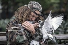 NYC100325 (a PSYCHIATRIST'S view) Tags: nyc love birds manhattan pigeons glenn photojournalism larry birdman the losack