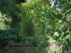 Beneath Tuzigoot Bridge (EllenJo) Tags: arizona river pentax tube raft verderiver riparian sundayafternoon june5 clarkdale 2016 ellenjo summerinarizona ellenjoroberts tuzigootbridge tuzirap pentaxqs1 cruisingdowntheriveronasundayafternoon