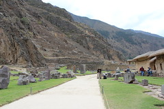IMG_6705 (University of Pennsylvania Alumni) Tags: peru machu picchu cuzco llama