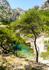 The Calanque de Sugiton, Marseille, France (DavidGabis) Tags: ocean travel sea summer wallpaper vacation sky people cliff mountain holiday seascape france color tree green tourism nature water sport rock pine creek french landscape island photography coast seaside marseille nice scenery holidays rocks europe mediterranean riviera european gulf view outdoor hiking turquoise background south hill sightseeing dive scenic azure wave diving wanderlust snorkeling explore maritime enjoy promenade environment inlet cote provence activity seafront cassis enjoying marvelous azur activities calanques pinewood calanque sugiton