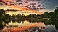 A softball sunset in Regent's Park